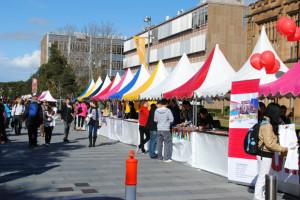 row-of-stalls